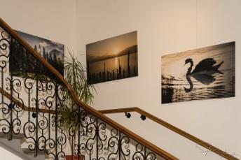 Ausstellung Rathaus – 530